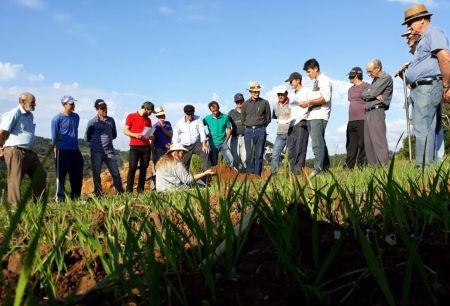 Epagri de Lacerdópolis capacita beneficiários do Programa Terra Boa