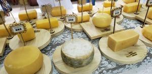 Concurso comprova a qualidade do queijo serrano produzido em SC