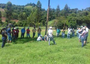 Produção de leite à base de pastagens perenes de verão é tema de dia de campo em Jupiá