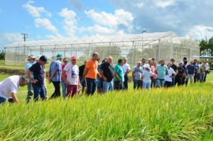 Epagri eleva número de atendimentos a famílias rurais e pesqueiras