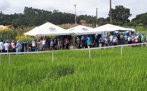 Epagri participa do maior evento tecnológico da agropecuária do Vale do Itajaí