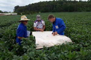 Manejo sustentável de áreas cultivadas com grãos é tema de evento em Campos Novos