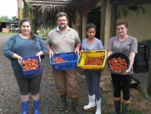 Agricultores de Frei Rogério investem na produção de alimentos limpos