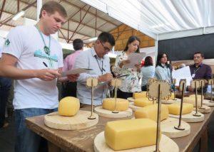 Read more about the article Queijo Artesanal Serrano brilha na Festa Nacional da Maçã