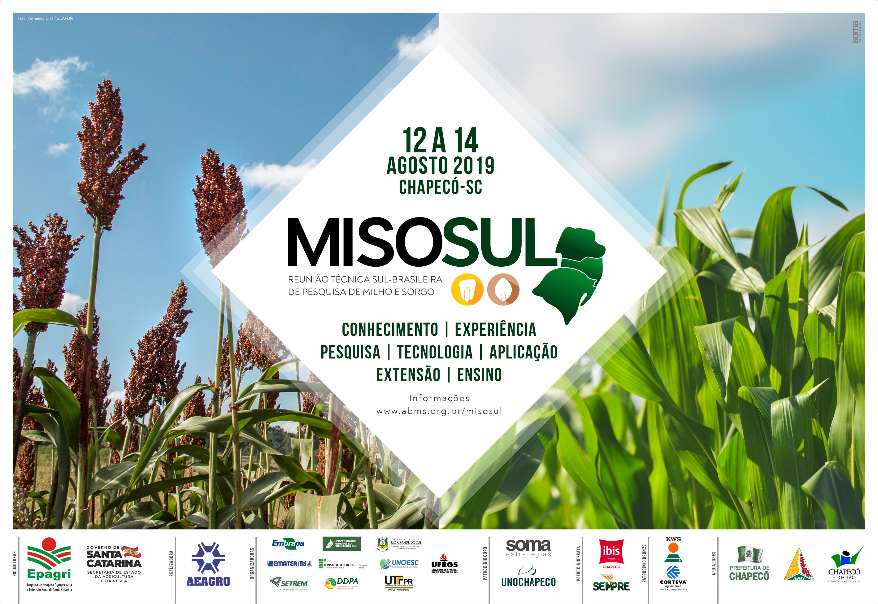 Inscrições abertas para evento sul-brasileiro sobre pesquisa em milho e sorgo
