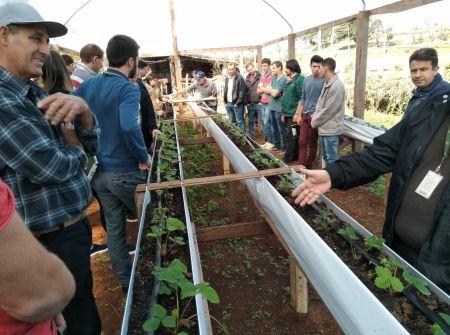 São Miguel do Oeste realiza 2º curso de produção de morangos