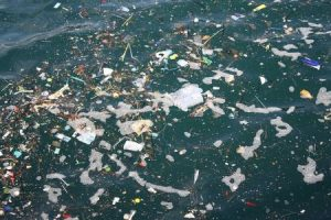 Seminário sensibiliza moradores de Barra Velha sobre o lixo no mar