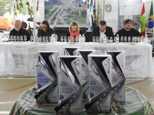 Festa Nacional do Vinho Goethe tem concurso para escolher o melhor vinho