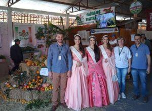 Estande da Epagri faz sucesso na Festa da Fruta de Mondaí