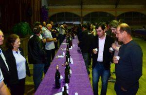 Read more about the article Concurso premia melhores vinhos de Quilombo