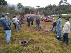 Irineópolis realiza reunião técnica sobre poda de árvores frutíferas