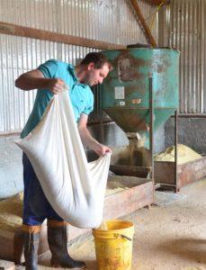 Silo secador de grãos