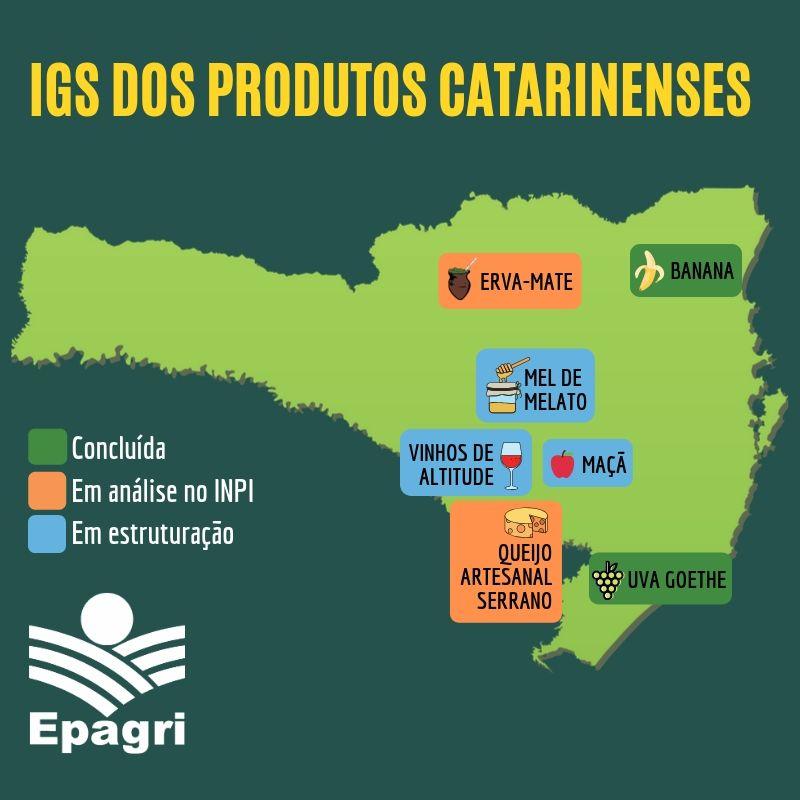 Conheça as Indicações Geográficas dos produtos de Santa Catarina