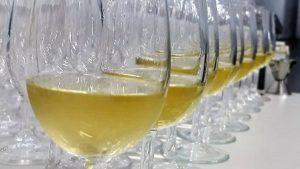 Read more about the article Concurso de vinho e sucos de uva incentiva produção no Planalto Norte
