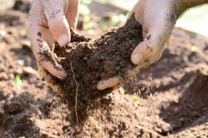 Agricultores de Sangão debatem como preservar o solo e a água