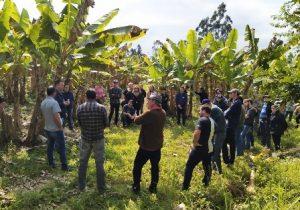 Read more about the article Excursão reforça a importância do trabalho cooperado na agricultura familiar