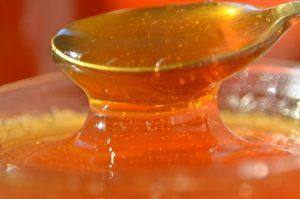 Santa Catarina tem o melhor mel do mundo