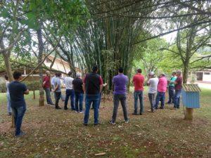 Epagri promove cursos para desenvolver a cadeia produtiva do bambu em SC