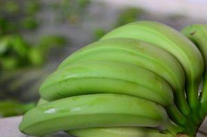 biomassa de banana verde receita como fazer