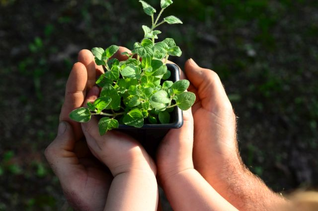 Epagri participa de fóruns de educação ambiental em Brasília