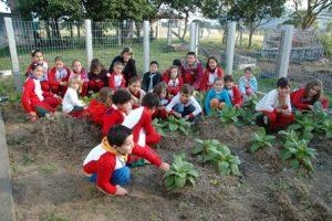 Epagri reconhece iniciativas ambientais de escolas no Planalto Serrano