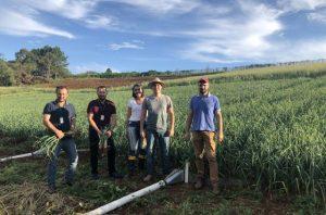 Manejo do alho reúne agricultores e técnicos na Epagri de Caçador