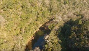 Mata ciliar: projeto revitaliza mais de 30 hectares no município de Paraíso