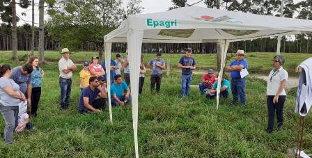 Dia de campo sobre pecuária leiteira reúne mais de 60 pessoas em Mafra