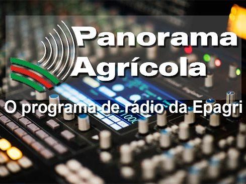 Rádio da Epagri destaca ações para produção de alimentos e segurança alimentar