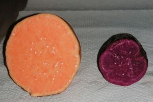 Read more about the article Produtor de Itajaí preserva variedades coloridas de batata-doce