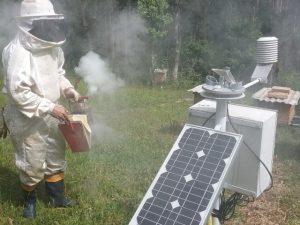 Epagri instala unidade de monitoramento de colmeias em Bela Vista do Toldo