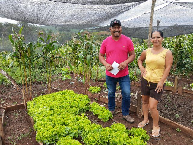 Famílias da Terra Indígena Xapecó lucram com a produção de alimentos
