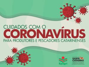 Coronavírus em SC: cartilha da Epagri orienta agricultores e pescadores para cuidados com produção e comercialização