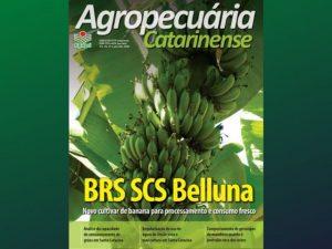 Read more about the article Revista da Epagri entra em nova fase e foca na divulgação científica