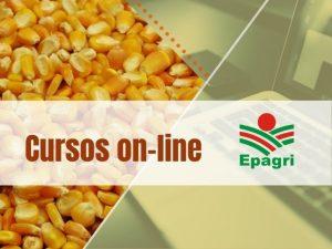 Confira a agenda de cursos on-line da Epagri para esta semana