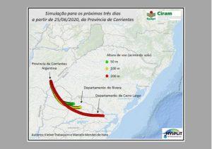 Read more about the article Nuvem de gafanhotos: pesquisadores da Epagri preveem que insetos devem chegar ao Uruguai