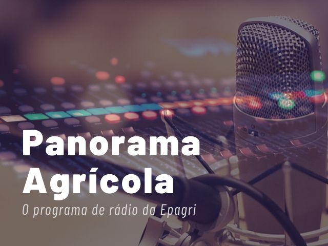 Panorama Agrícola destaca projetos da Epagri vencedores do prêmio Expressão de Ecologia