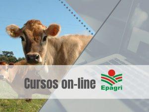 Read more about the article Cursos on-line da semana abordam sanidade bovina, plantio direto de hortaliças e RCP Digital