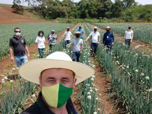 Pesquisadores e extensionistas integram trabalhos com as culturas de alho e cebola