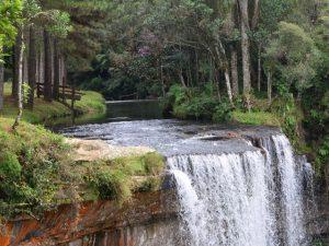 Read more about the article Chegou a hora de investir na captação e preservação da água