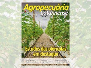 Estudos com hortaliças e agricultura 4.0 são destaques na revista científica da Epagri