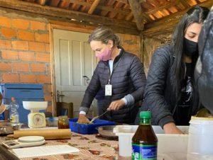 Read more about the article Epagri orienta sobre manejo de apiários no inverno: veja como preparar o bife proteico