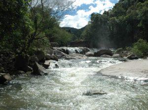 Read more about the article Governo do Estado lança amanhã dois programas de apoio à resiliência hídrica no meio rural