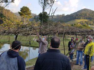 Read more about the article Epagri capacita produtores de uva em Pedras Grandes