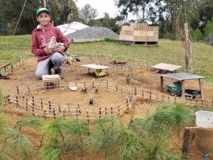 Read more about the article Infância no interior: com criatividade, garoto constrói mini fazenda na propriedade da família